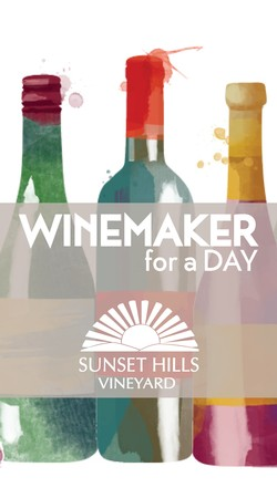 Winemaker for a Day - at Sunset Hills Vineyard