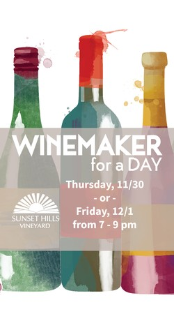 Winemaker for a Day - at 50 West Vineyards